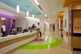 mondo-bolnica