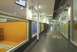Dom-zdravlja-hallway